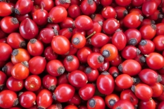 Malé plody určené na sušenie