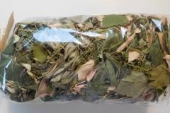 Bylinkový čaj na Diabetes (balíček)